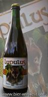 Lupulus Tripel 75cl